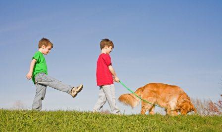 How to Get Kids Active