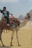 Wendy Egypt Camel ride
