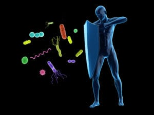 Nutrition For A Natural Immune System Boost